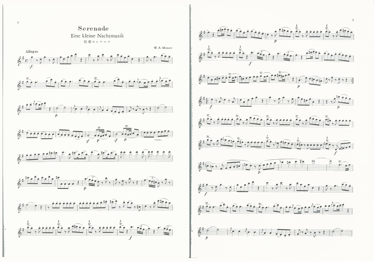 DOREMI 竖笛演奏的大师小品集 附CD